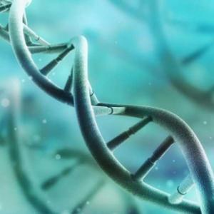 Учени успяха да измерят колко тежат хромозомите