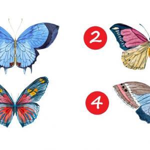 Изберете пеперуда и разберете кои са вашите най-силни качества