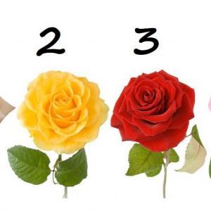 Изберете роза и вижте за какво мечтаете в любовта