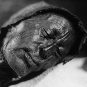 Последното ястие на Толундския човек подсказва за жертвоприношение