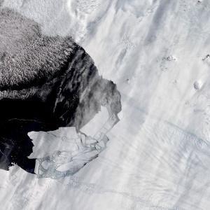 Топящ се глетчер в Антарктика разкри неизвестен досега остров