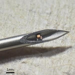 Миниатюрен чип може да се инжектира в тялото със спринцовка