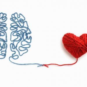 Ако детето добре разбира своите и чуждите емоции, се учи по-добре