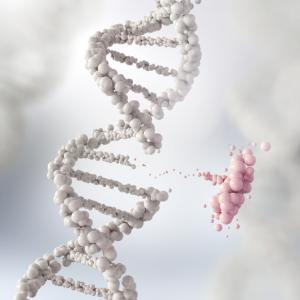 Учени отделиха гени, които влияят на защитата срещу коронавируса