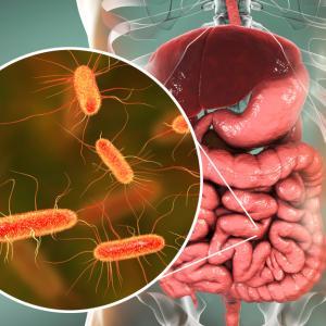 Хората, пътуващи в чужбина, са по-уязвими на устойчиви на лекарства бактерии