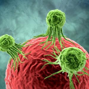 Лекари ще откриват рак с помощта на кръгли червеи?