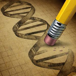 Нова генна терапия използва парацетамол, за да пребори генетични заболявания