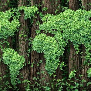 В Давос водещи световни компании призовават правителствата да помислят за околната среда