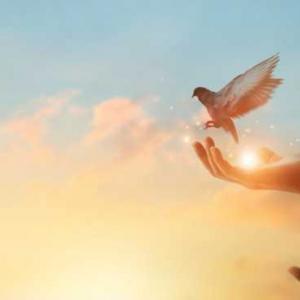 В нещастието няма друго лекарство освен надеждата: 20 цитата за трудни моменти