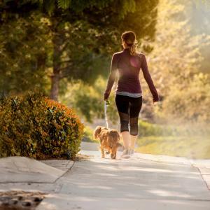 Ежедневната разходка може да добави 7 години към живота ви