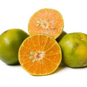Портокалът всъщност не е оранжев