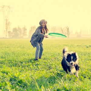 Как да си играем с кучето?