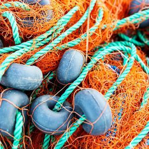Незаконният риболов излага на риск океанските ресурси