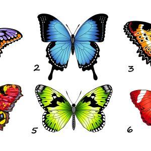 Тест: Избери си пеперуда и разбери повече за себе си