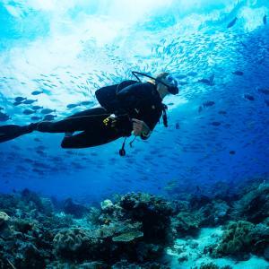 Скуба водолази в Антарктика: Софийски фестивал на науката 2021