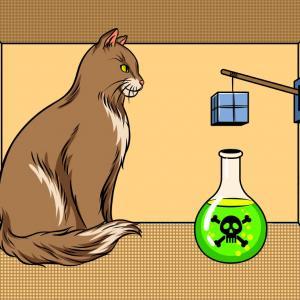 Ето как да спасим котката на Шрьодингер според физиката