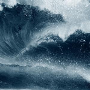 Световните океани се
