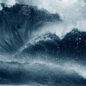 В световния океан има все повече