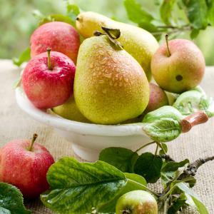 Ябълките и крушите намаляват риска от инсулт