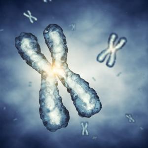 За първи път учени направиха пълна секвенция на човешки хромозом