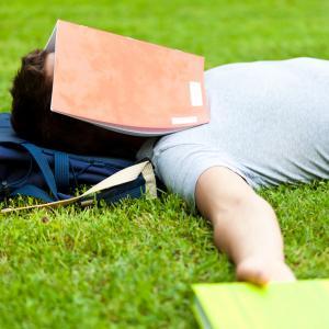 Можем да трупаме знания и докато спим