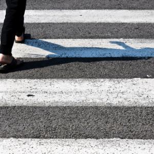 31 октомври 1951 г. - За първи път зебра брани пешеходци