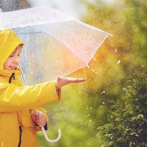 Защо мирисът на дъжд гали сетивата ни?
