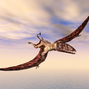 Летящ хищник с размерите на малък самолет е бил цар на небето преди много години