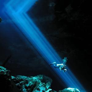 Гмурци откриха зъби на мегалодон в наводнена пещера в Мексико
