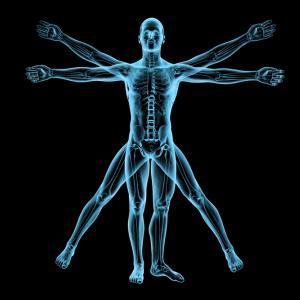 10 прости въпроса за човешкото тяло, на които науката още не може да отговори