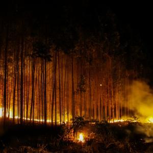 Пожарите в Амазония са увеличили топенето на ледниците на стотици километри разстояние