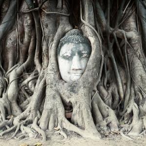 Това са едни от най-популярните статуи на Буда