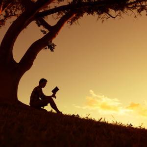 14 причини да четете всеки ден