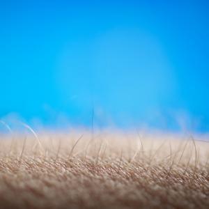 Настръхналата кожа – естественият детектор на лъжата