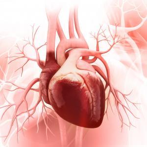 29 септември - Световен ден на сърцето