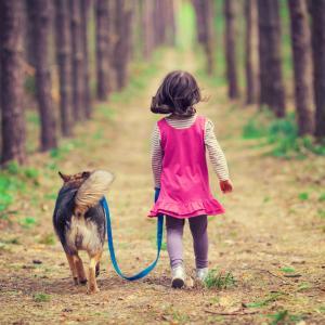 Защо кучетата са най-невероятните създания на света