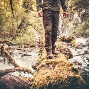Невероятната история на човека, който засади гигантска гора дърво по дърво