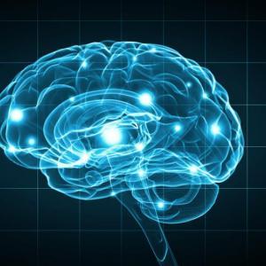 Мозъкът гълта повече енергия, за да спре да мисли