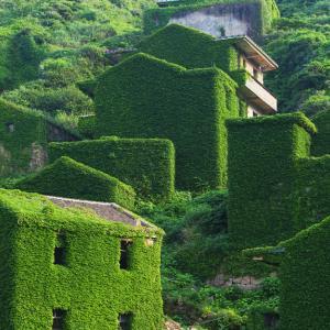 Едно изоставено селище в Китай, погълнато от природата