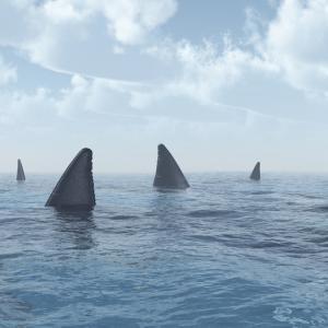 Плувай или умри - това ли е съдбата на акулите?
