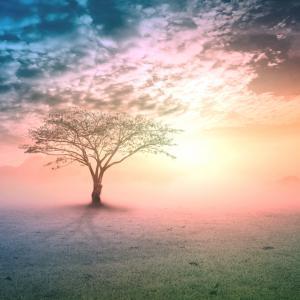 9 вдъхновяващи житейски урока, които ще променят живота ви