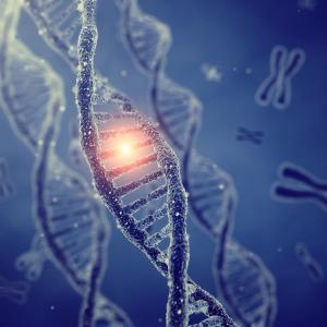 Разгадаха функциите на най-ранните гени на живота
