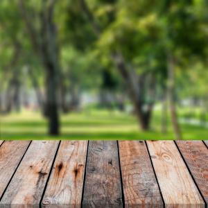 Зелените пространства намаляват градската престъпност