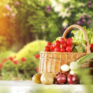 25 храни, които съдържат малко над 0 калории