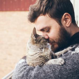 През целия си живот сте държали котката си като аматьори