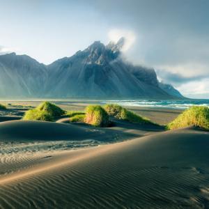 Къде са отишли всички дървета в Исландия?