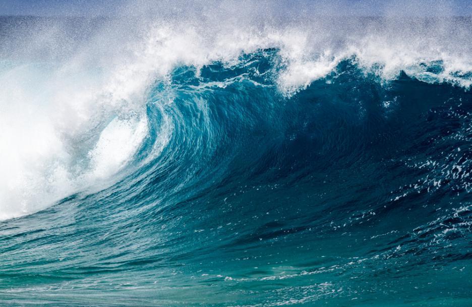 cdff172bfbc Видео: Електрически сърф | Обекти
